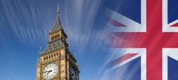 The Telegraph: După Brexit, fermierii britanici ar putea cultiva OMG-uri