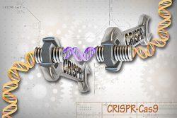 Un pas uriaș spre un statut juridic al CRISPR în UE